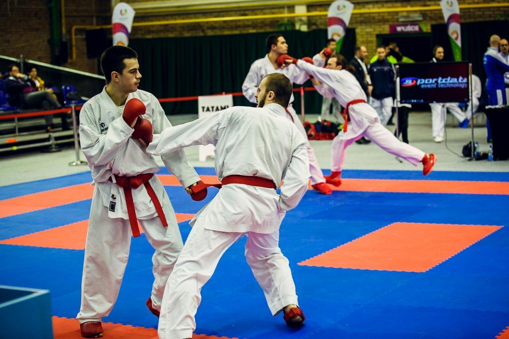 Mistrzostwa-Karate-WG-mm373.jpg