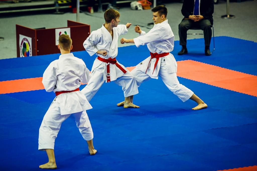 Mistrzostwa-Karate-WG-mm061.jpg