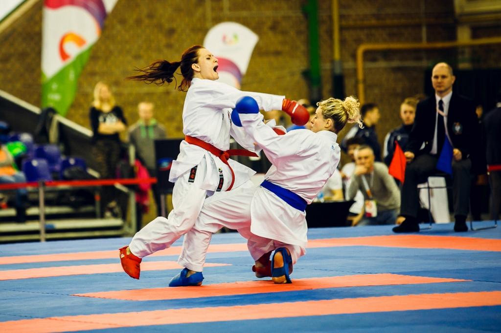 Mistrzostwa-Karate-WG-mm087.jpg